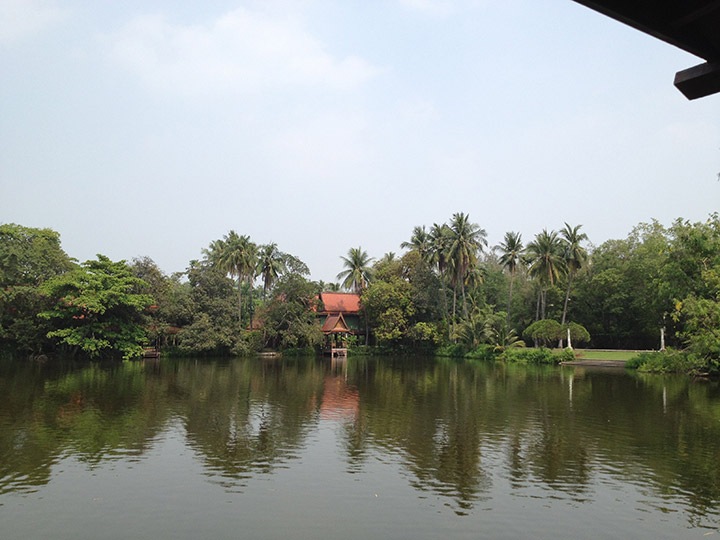 Lake view at the coconut farm